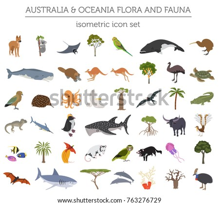 Isometric 3d Australia and Oceania flora and fauna. Animals, birds and sea life. Build your own geography infographics collection. Vector illustration