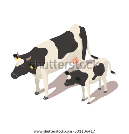 Isometric 3d vector illustration of small and large cow. Icon for web. Isolated on white background.