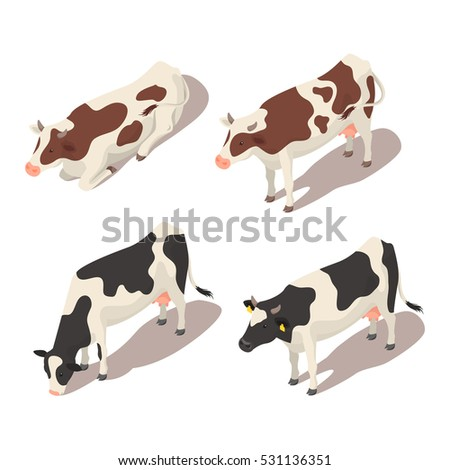 isometric 3d vector set of cows