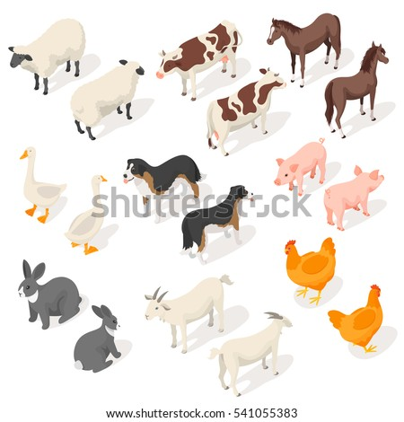 isometric 3d vector set of farm