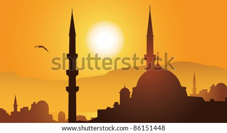 istanbul city and mosque in
