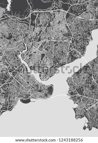 Istanbul city plan, detailed vector map detailed plan of the city, rivers and streets