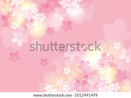it is a beautiful sakura in