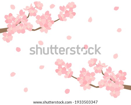 It is an illustration of a beautiful cherry blossom. Stock photo ©