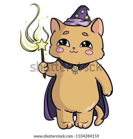 it is cute wizard cat
