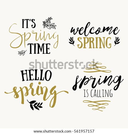 it's spring time lettering