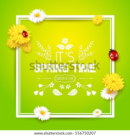 Its spring time. Spring background with flowers and ladybugs on green background