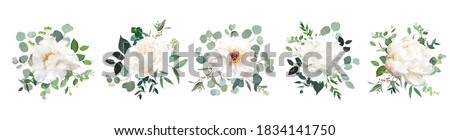 Ivory beige, white and creamy rose, peony flowers vector design wedding bouquets. Eucalyptus, greenery. Floral pastel watercolor style. Blooming spring floral card. Elements are isolated and editable