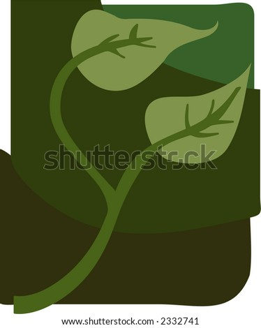Ivy drawing for garden and nature themes