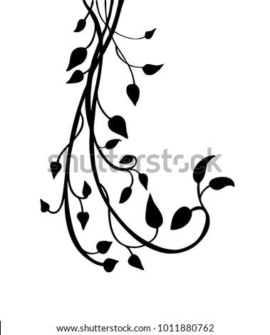 ivy vine silhouette vector