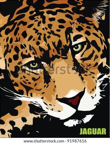 jaguar - vector