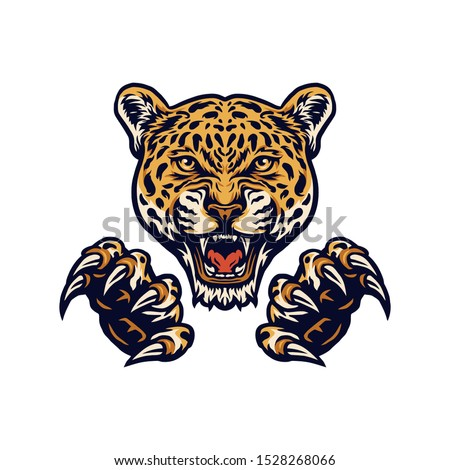 jaguars and claws illustrations