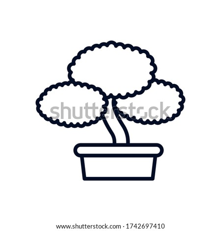 japanese bonsai tree isolated