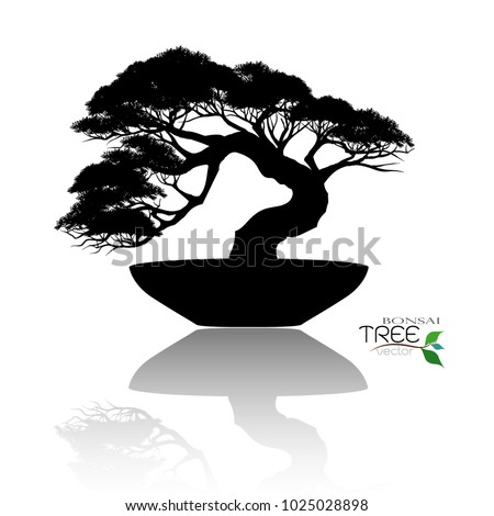 Image Bonsai Tree Png Stunning Free Transparent Png Clipart Images Free Download