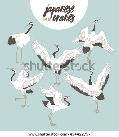 japanese dancing cranes vector