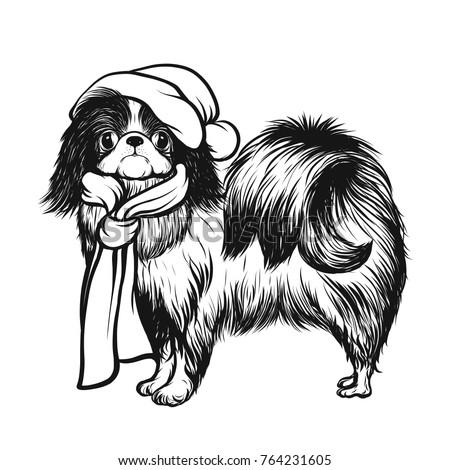 japanese hin dog in a santa