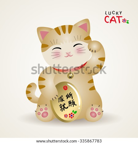 Fuckkk! asian prosperity cat