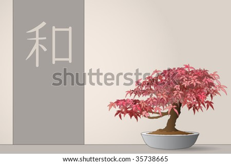 japanese maple bonsai for sale. japanese maple bonsai for