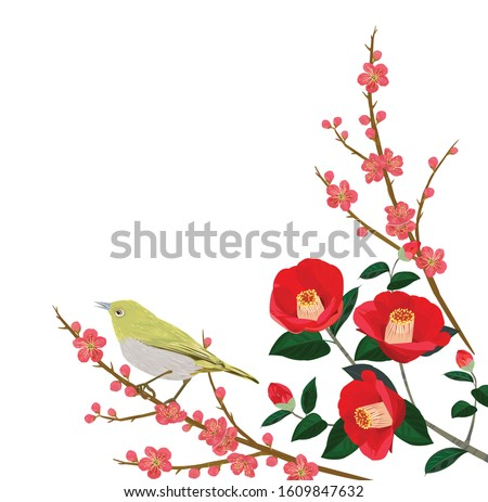 japanese plum and camellia are