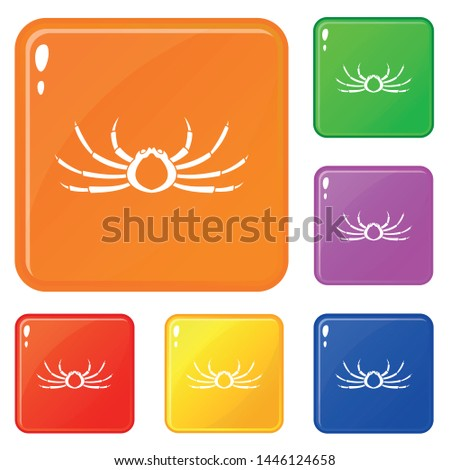 japanese spider crab icons set
