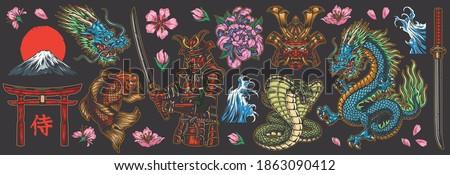 Japanese traditional colorful elements set with dragon samurai katanas torii gate koi fish fujiyama mountain snakes sea waves chrysanthemum and sakura flowers isolated vector illustration