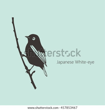 japanese white eye outline