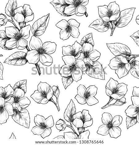 Jasmine flowers. Vector seamless pattern. Vintage style #1308765646