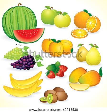 Juicy Fruits, set of isolated, detailed vector illustrations and icons
