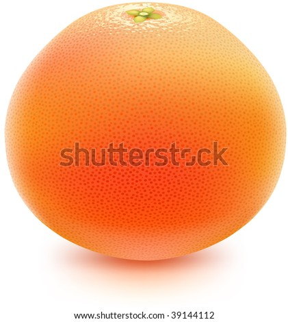 Juicy grapefruit. Photorealistic vector, contains gradient mesh elements. More fruits & food-related objects in my portfolio!
