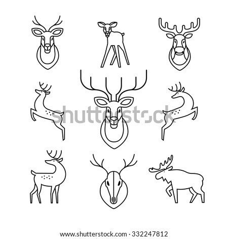Jumping and standing deers, moose, antlers and horns, stuffed deer heads and scull. Thin line art icons set. Modern black symbols isolated on white for infographics or web use.
