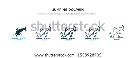 jumping dolphin icon in