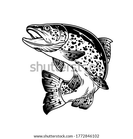 Jumping trout fish vintage template in monochrome style isolated vector illustration Stock photo ©