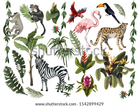 jungle animals  flowers and
