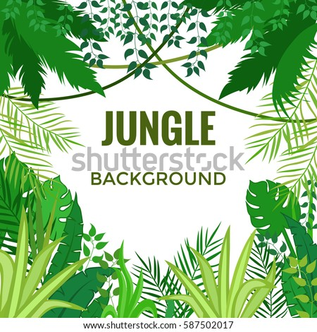 Jungle background. Jungle trees and plants. Vector illustration.