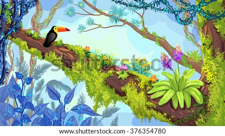 jungle forest illustration of