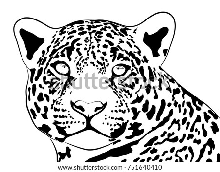 Shutterstock jungle jaguar