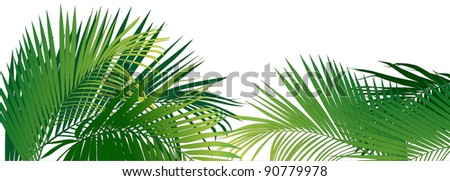 jungle rain forest (tropical plants vector image)