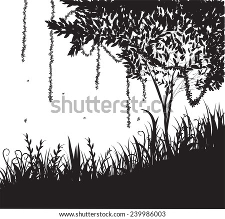 jungle silhouette rain forest shadows liana black and white plants life