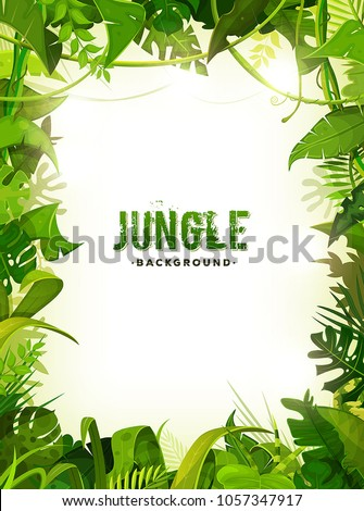 jungle tropical leaves