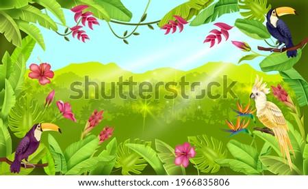 jungle vector landscape