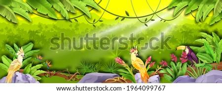 jungle vector rainforest