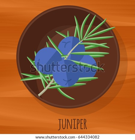 Juniper Logo Free Vector Download Free Vector Art Stock Graphics