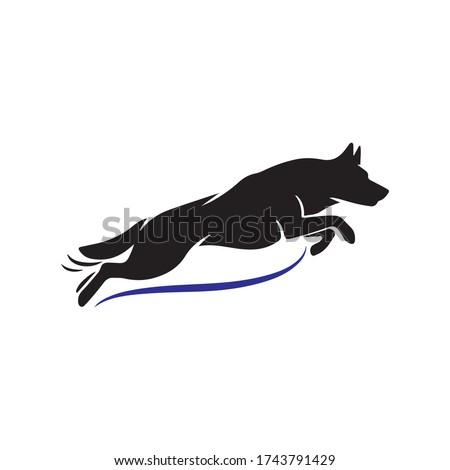 k9 german shepherd dog jumping