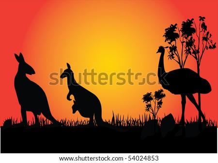 kangaroo and emu in the sunset Australia