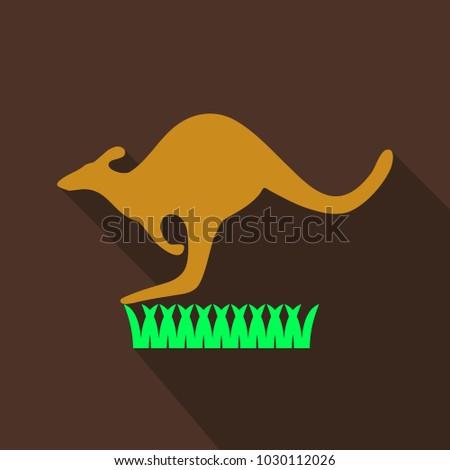 kangaroo is running on grass