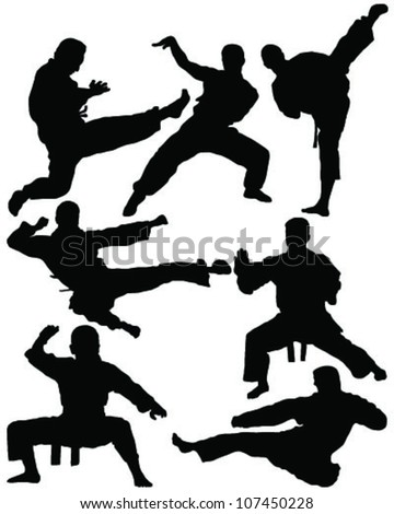 Karate a silhouette on a white background -vector