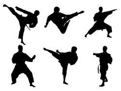Karate poses