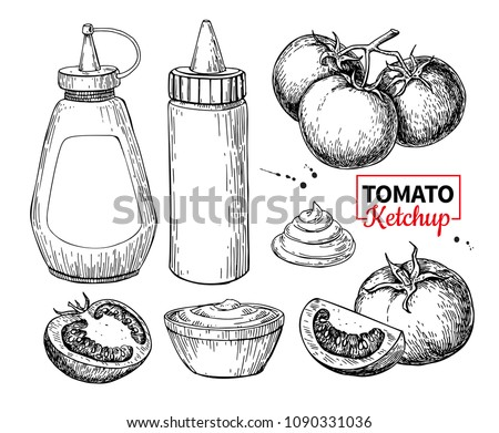 Ketchup sauce bottle with tomatoes. Vector drawing. Food flavor in plastic container and bowl. Vintage engraved illustration isolated on white background. Fastfood ingredient sketch