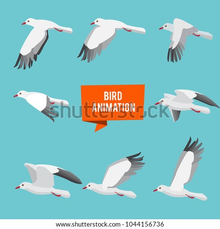 Key frames of animation flying bird. Animation bird fly, animal wildlife fly loop beak, vector illustration