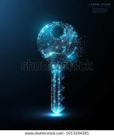 Key. Polygonal wireframe mesh art with crumbled edge on blue night sky with dots, stars and looks like constellation. Security, success, solution concept illustration or background